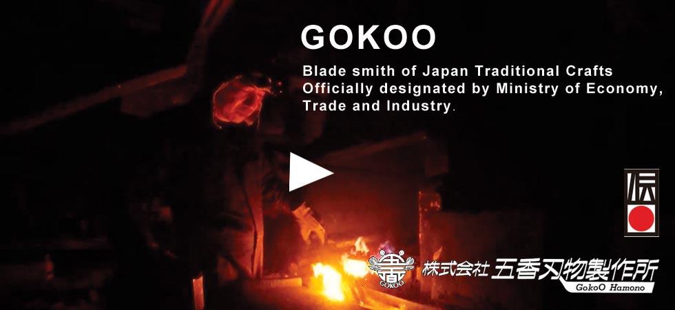 gokoo-cm.jpg